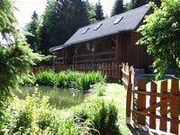 Ferienhaus Ludwig Erzgebirge in Breitenbrunn - kleines Detailbild