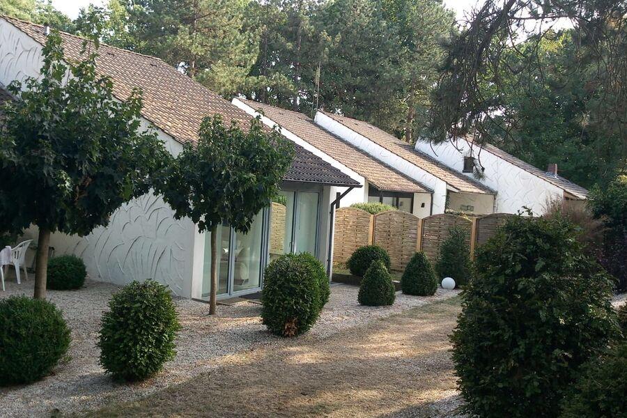 Haus mit Terrase und Garten