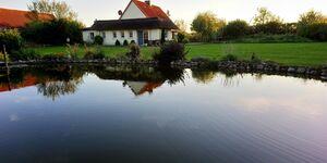 Ferienhaus am See in Kalkhorst-Dönkendorf - kleines Detailbild