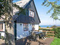 Ferienhaus in Svaneke, Haus Nr. 4853 in Svaneke - kleines Detailbild