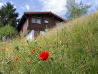 Ferienhaus am Sommerberg in Masserberg-Fehrenbach - kleines Detailbild