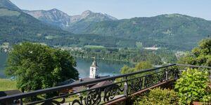 The View, Schwanensee in St. Wolfgang im Salzkammergut - kleines Detailbild