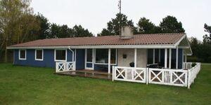 Süd 'Spitze' Ferienhaus - Skovsyrevej in Marielyst - kleines Detailbild
