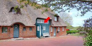 0520 Herzmuschel 10 Herrenhof, Herzmuschel 10 Herrenhof in Wrixum - kleines Detailbild