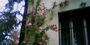 Casa del Viale, Ferienwohnung I Casa del Viale in Arona - kleines Detailbild