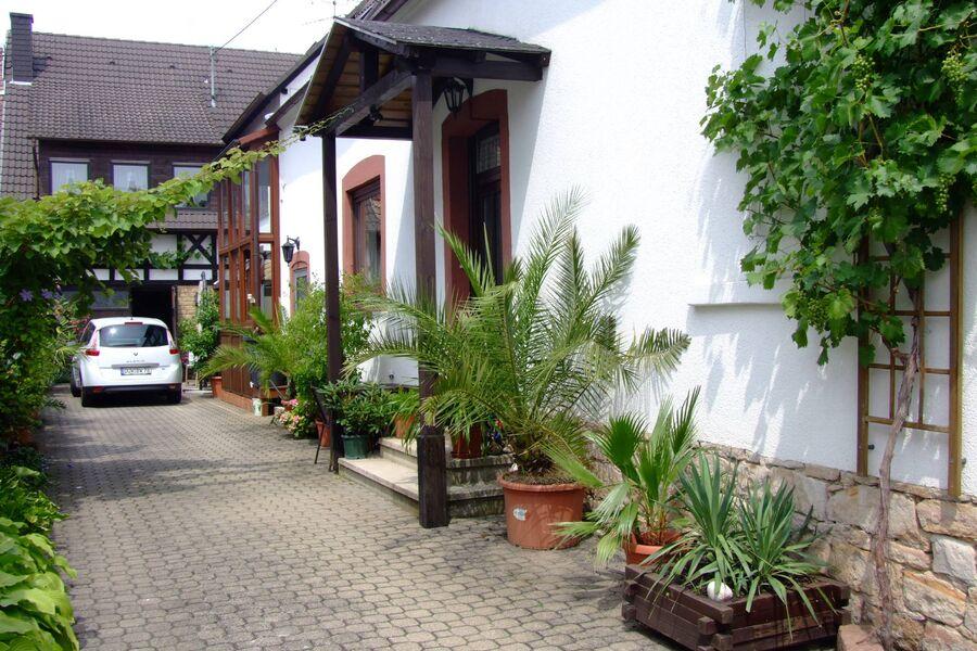 Hof mit mediterranen Pflanzen