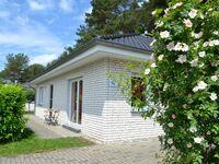 Ferienhaus Albatros in Karlshagen (Ostseebad) - kleines Detailbild