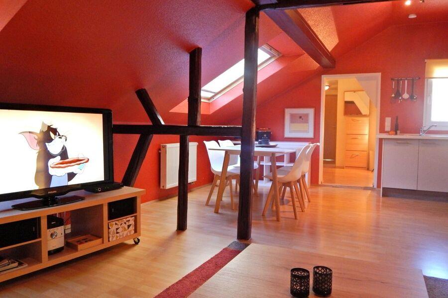 Uferfront am Rhein + unser Ferienhaus