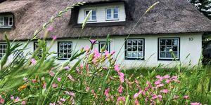Ferienwohnung 'Natur pur in Seegaard' in Husby-Markerup - kleines Detailbild