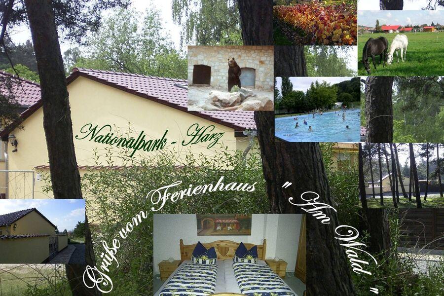"""Ferienhaus""""Am Wald"""""""