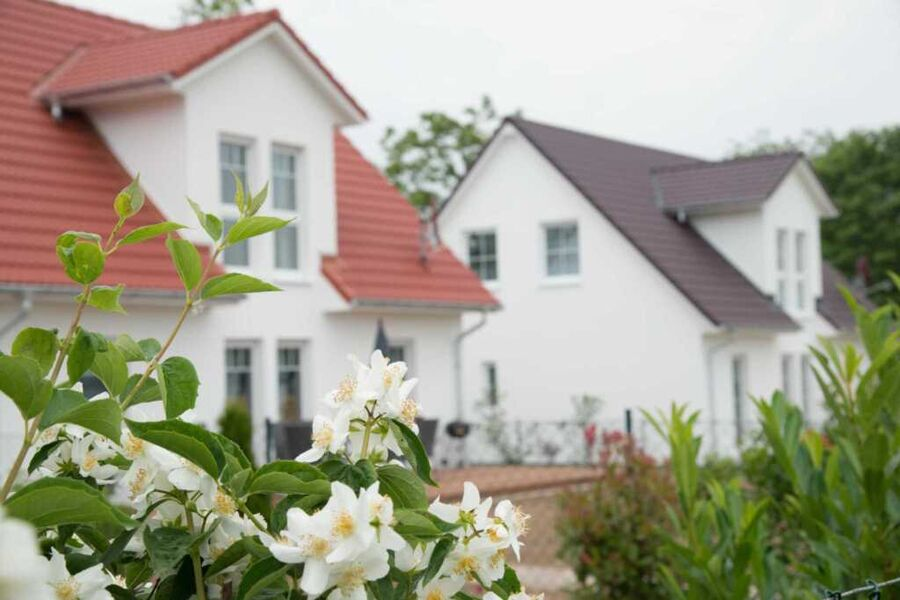 Ferienanlage Schwabe mit Schwimmbad, Ferienhaus (1
