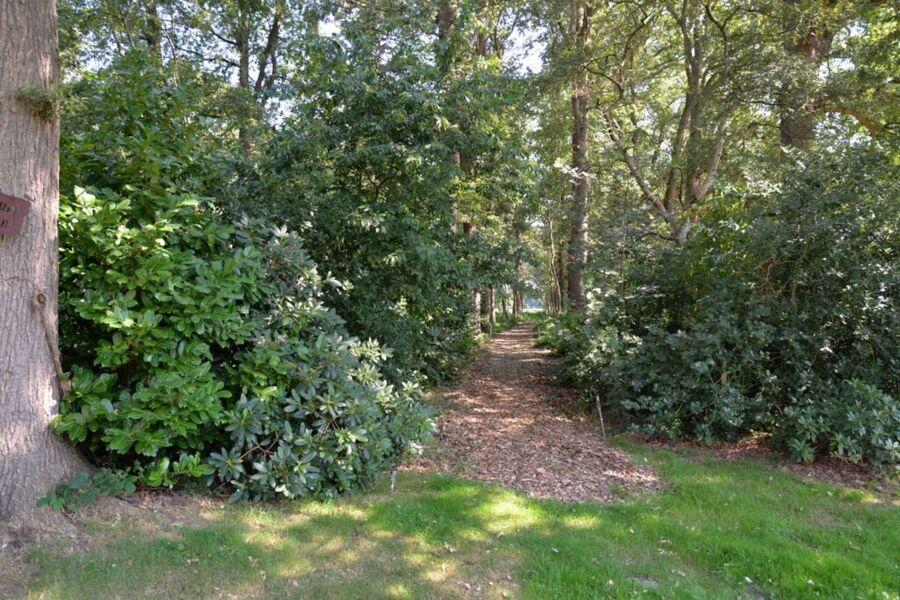Ferienhaus 'Waldblick', 35651, Ferienhaus 'Waldbli