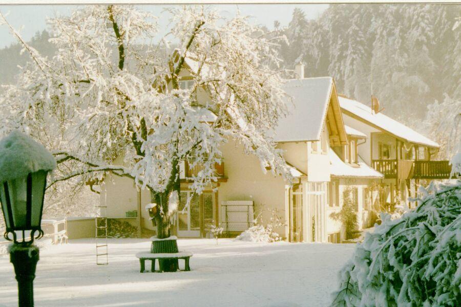 Winterstimmung
