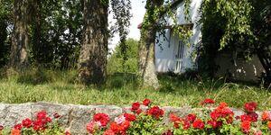 Ferienwohnung hinterm Schloss in Staufen - kleines Detailbild