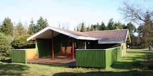 Süd 'Spitze' Ferienhaus - Sortpoppelvej 7 in Marielyst - kleines Detailbild
