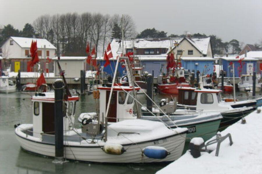 Niendorfer Hafen im Winter