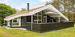 Ferienhaus in Jerup, Haus Nr. 66666 in Jerup - kleines Detailbild