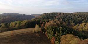 Ferienwohnung Beensen in Braunlage-Hohegeiß - kleines Detailbild