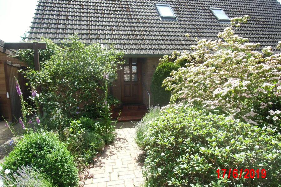 Eingangsbereich mit Vorgarten