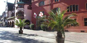 Ferienwohnung 'Am Rathausplatz' in Freiburg - kleines Detailbild