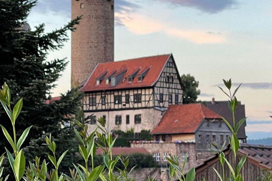 Hinterburg Schlitz mit Hinterturm