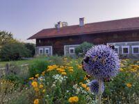 Landhaus Au im Wald - Ferienwohnung Nr. 4 in Unterreit - kleines Detailbild
