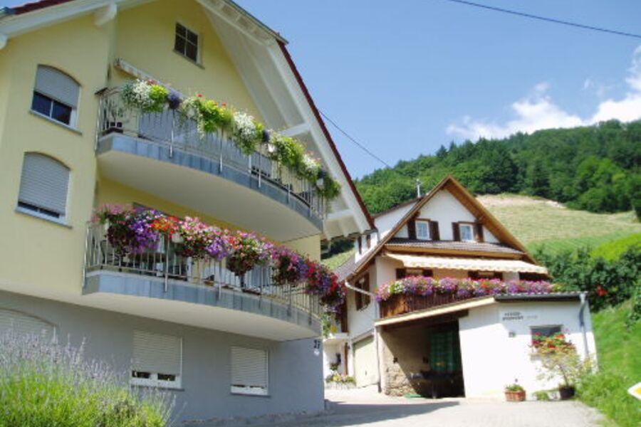 Ferienhof Mayer- umgeben von Weinbergen