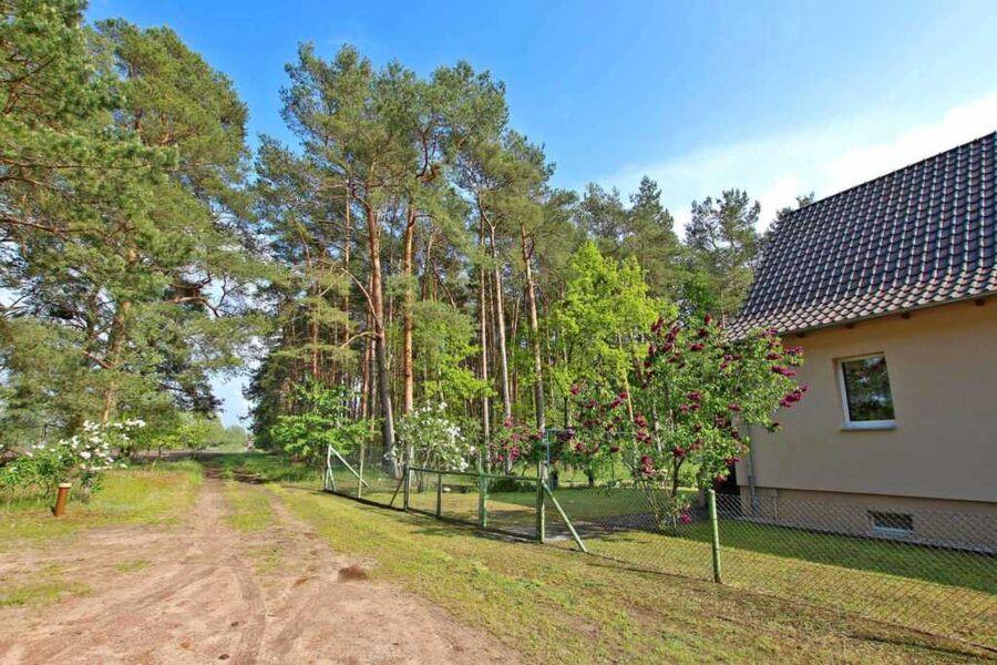 Grundstück direkt am Wald