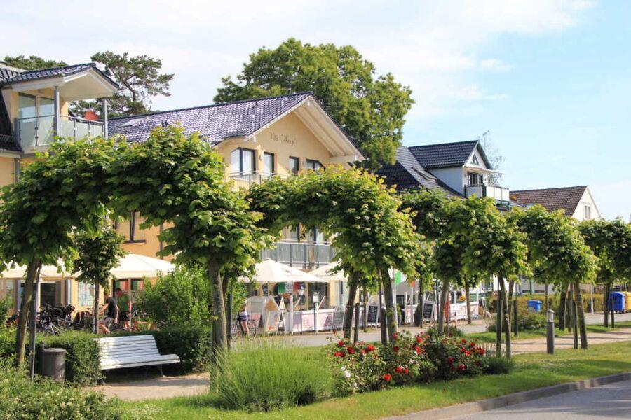 Villa Wauzi, Ferienwohnung Nr. 1 Ostseeglück