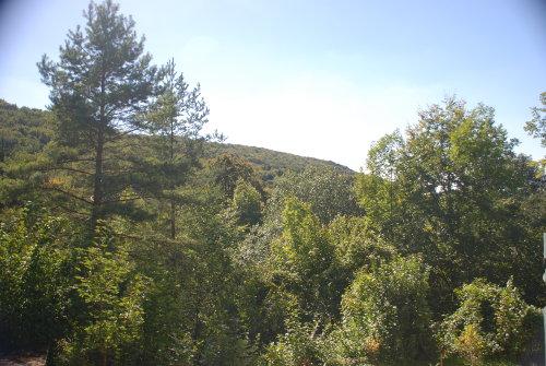 Blick vom Balkon in die Natur