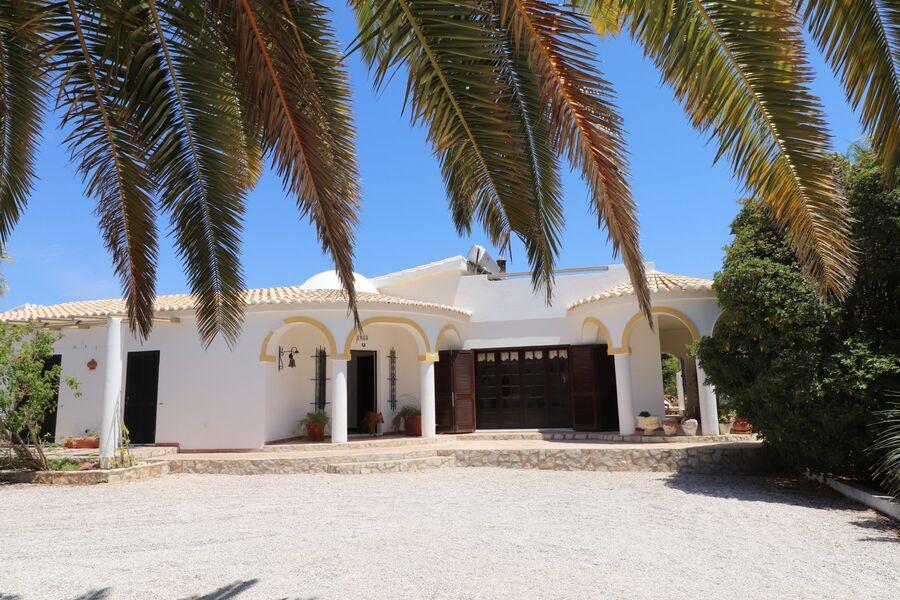 Ihre Casa zwischen riesen Palmen