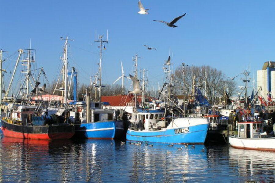 Fischereihafen 10 Gehminuten