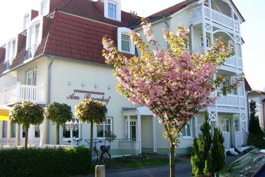 Eingang zu den Ferienwohnungen am Rosenhof