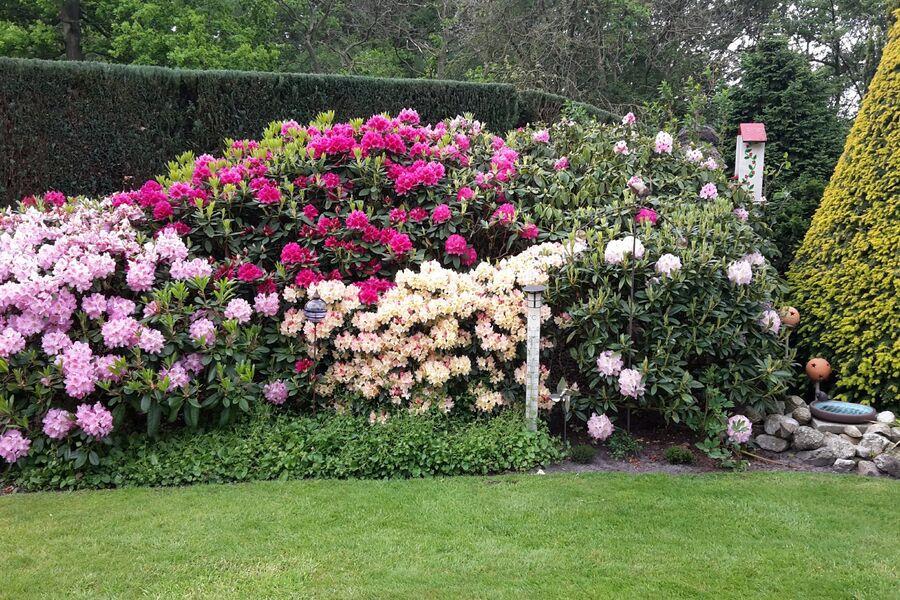 Blick von derTerrasse in den Garten