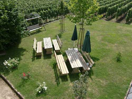 Altes Pfarrhaus: Garten & Weinberge