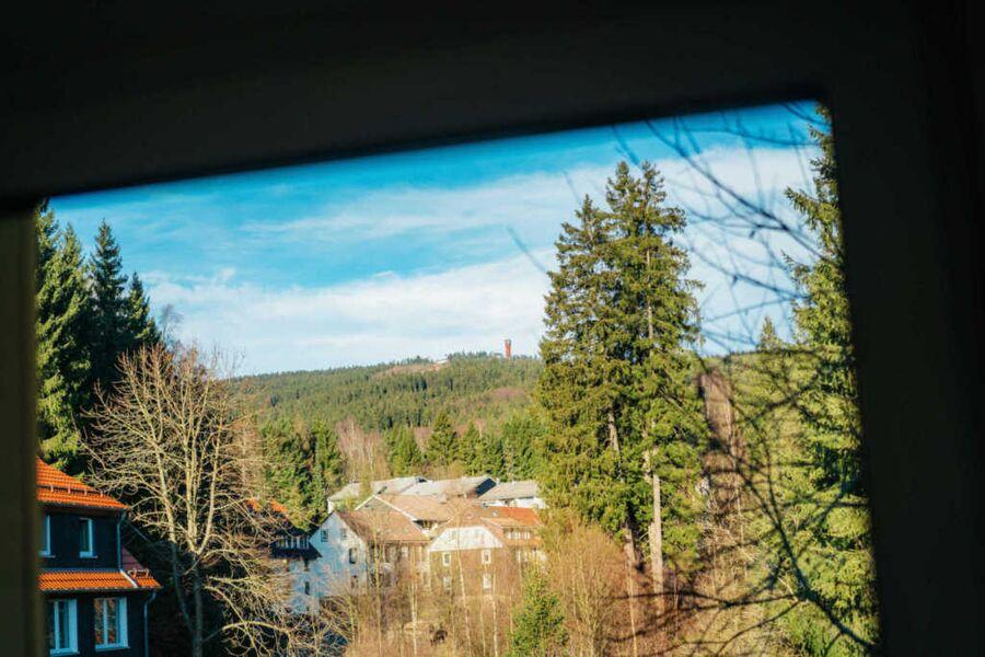 Ferienwohnung Fichte Braunlage- Blick aus der Wohn