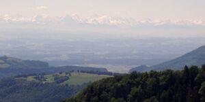 Ferienwohnung Julia in Grenzach-Wyhlen - kleines Detailbild