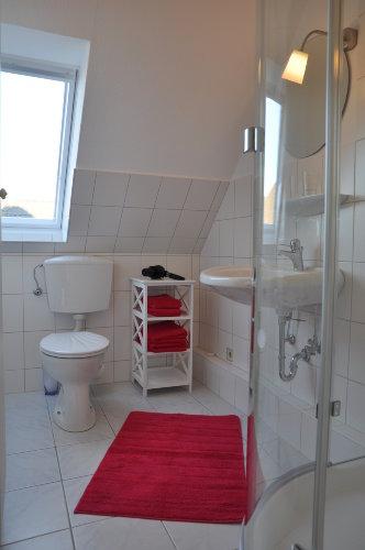 Das moderne Duschbad