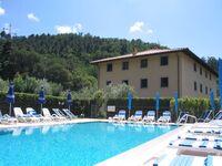 Ferienhof 'Frantoio del Monte' in Massarosa - kleines Detailbild