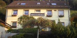 Haus Birkenstübchen - Ferienwohnung Rose in Langelsheim-Lautenthal - kleines Detailbild