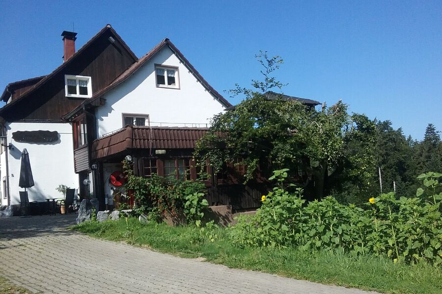 Haus-Biggi die grüne Oase
