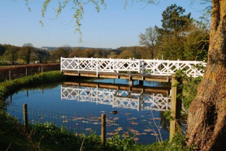 Blick über den Teich a.d. Ferienwohnung.