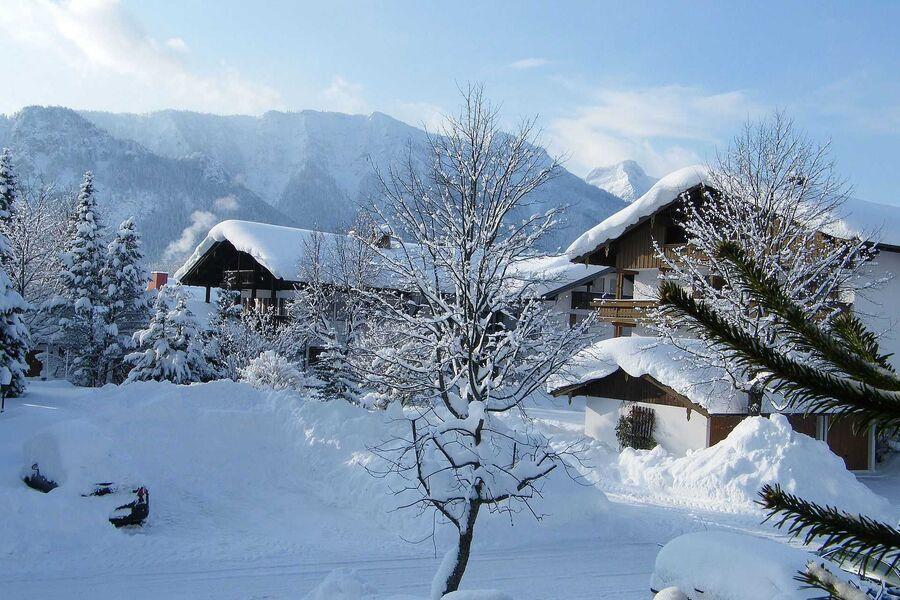 Winter weiß-blau in Inzell