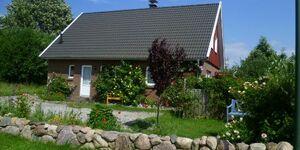 Lindenhaus in Kalkhorst-Groß Schwansee - kleines Detailbild
