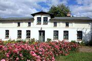 Bauernhaus mit Rosenspalier