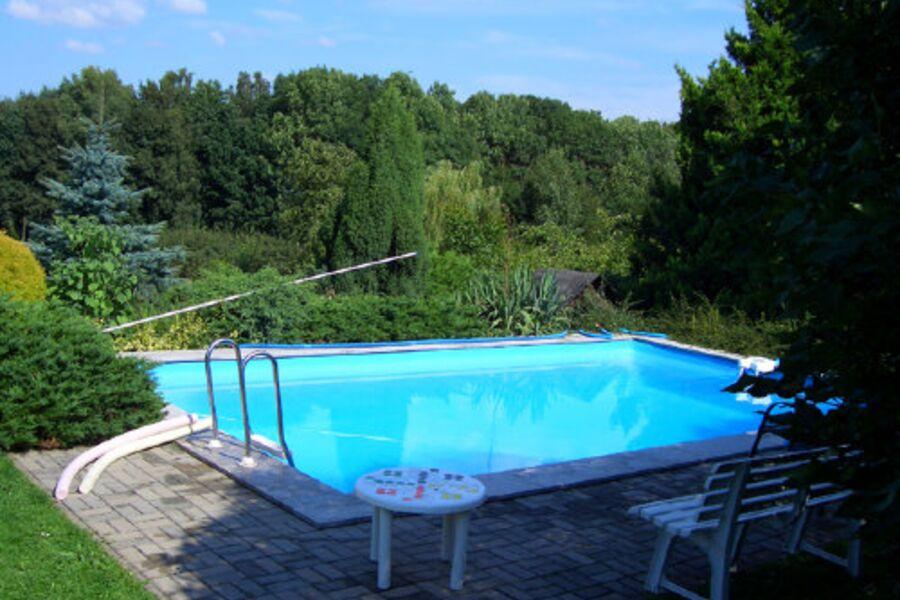 Pool mit großem Garten