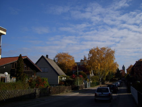 Zaunkönigweg