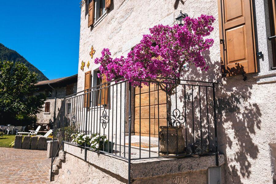 Eingang von unseren 4 Ferienwohnungen
