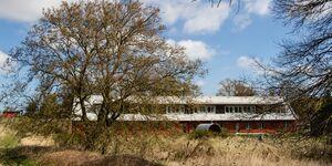 Ferienhaus pergo - Gelbe Wohnung in Buggenhagen-Klotzow - kleines Detailbild