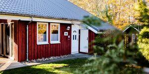 Ferienhaus Eichhörnchen II in Extertal-Rott - kleines Detailbild